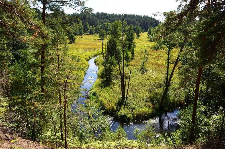 TOP 5 gražiausios upės plaukimui baidarėmis šalia Vilniaus | Grūda