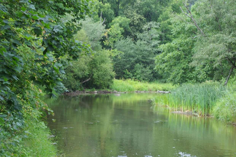 TOP 5 gražiausios upės plaukimui baidarėmis šalia Vilniaus | Verknė