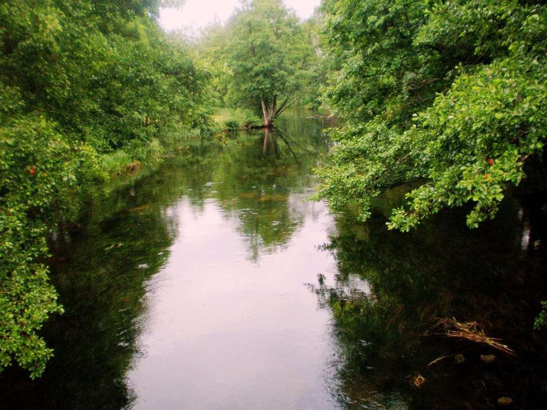 TOP 5 gražiausios upės plaukimui baidarėmis šalia Vilniaus | Žeimena