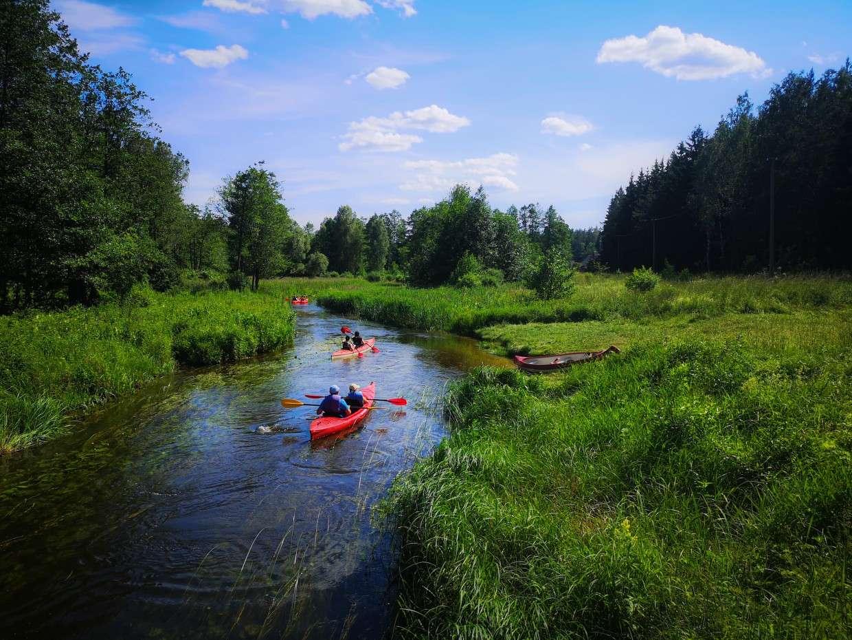 Plaukimas baidarėmis Kiaunos upe